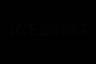 Iceberg'